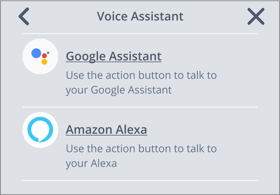 Switching between voice assistant #2.png